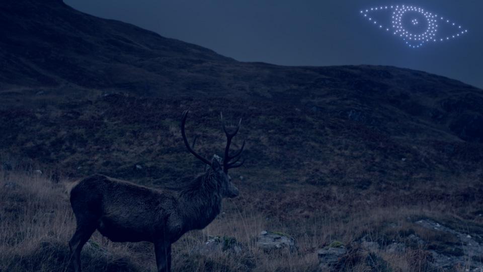 deer looks to drone formation of deer in the night sky